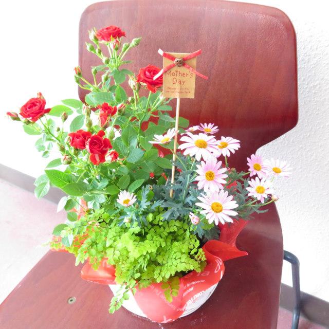 お花大好き!お母さんの花かご【送料無料母の日ギフト】md034