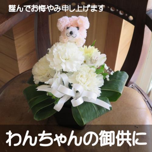 わんちゃんの御供用 生花アレンジメント(ホワイト花)