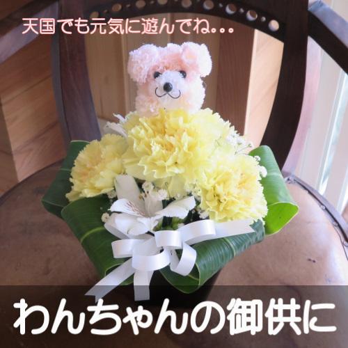 0381わんちゃんの御供用 生花アレンジメント(イエロー花)