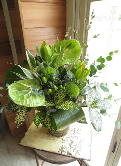 0326夏の御祝いにおすすめグリーンたっぷりの生花アレンジメントブリキポット【観葉倶楽部グリーンブーケ】冬もご注文いただけます
