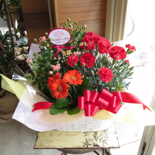 カーネーションとミニバラの花かご【送料無料母の日ギフト】18md010