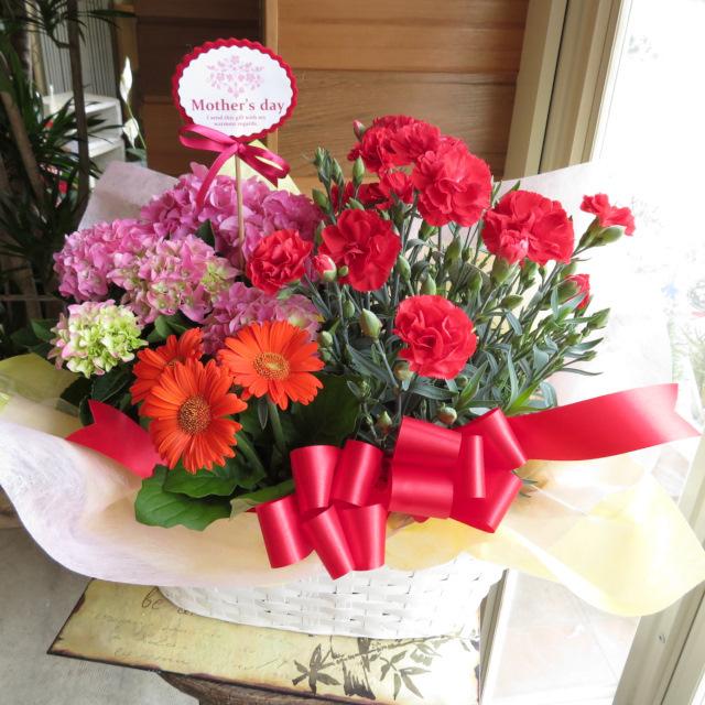 カーネーションとアジサイピンクの花かご【送料無料母の日ギフト】18md003