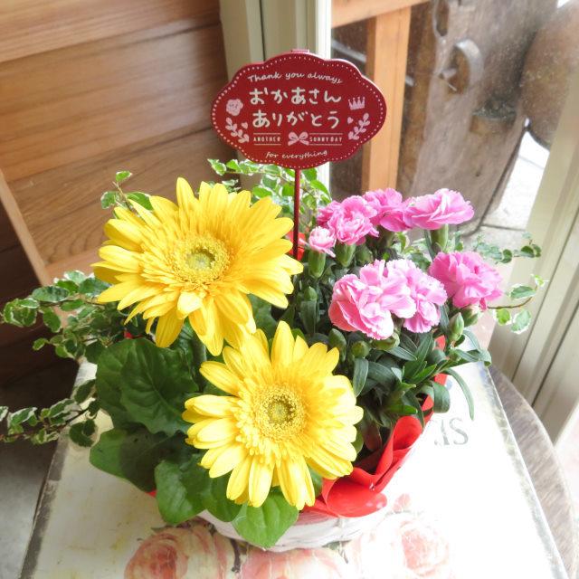イエローガーベラバスケット【送料無料母の日ギフト】19md001