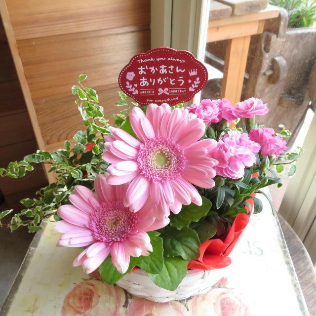 ピンクガーベラバスケット【送料無料母の日ギフト】19md003