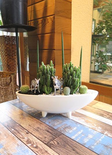 0504【アニマルガーデン】観葉植物ギフト シマウマとセレウスサボテン足付鉢SA08RW