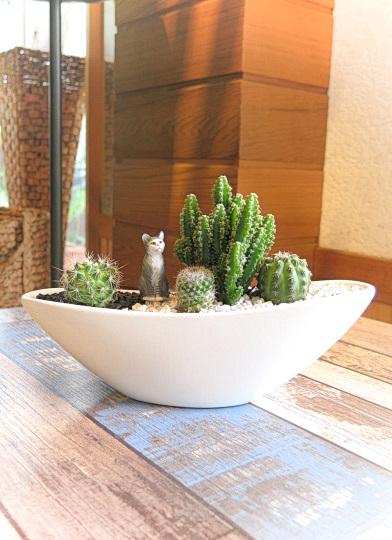 0510【アニマルガーデン】観葉植物ギフト ネコとセレウスサボテンSA03AW