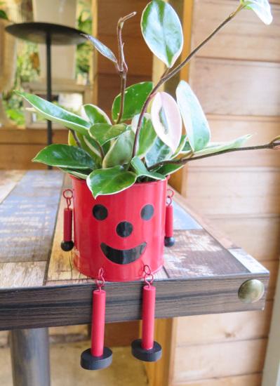 0528観葉植物ギフト ブリキマンとサクララン