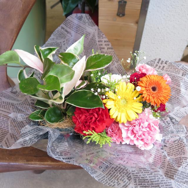 観葉植物とお花のペアアレンジメント【送料無料母の日ギフト】20md002