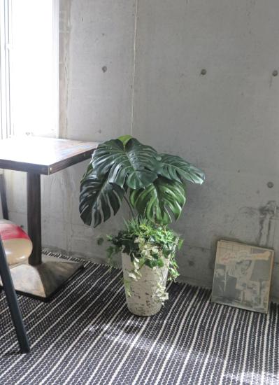 0574フェイクグリーン観葉植物ギフト モンステラビッグリーフ(軽量インテリア鉢使用)