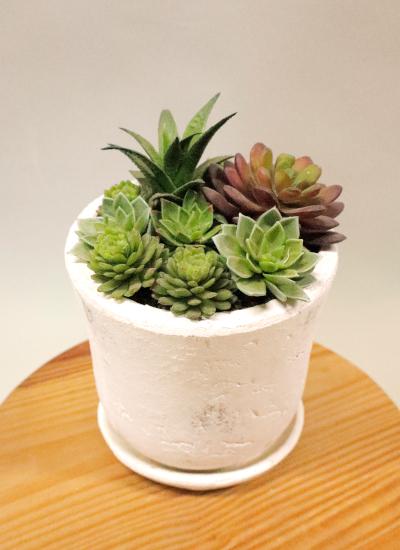 0589フェイクグリーン 多肉植物いっぱいホワイト鉢