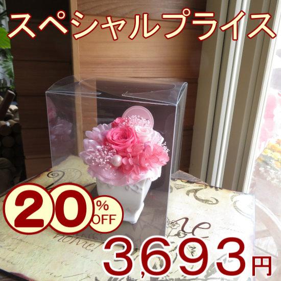 スペシャルプライス20%OFF☆プリザーブドフラワー「プレジール」 【送料無料母の日ギフト】md015