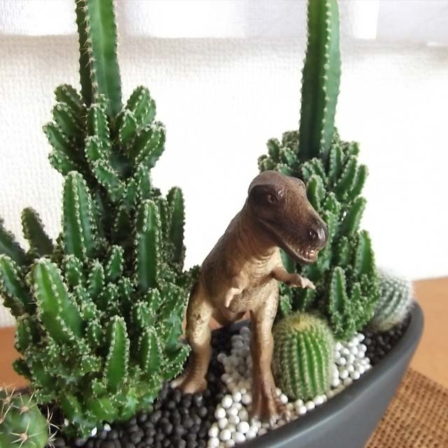 0267【送料無料・アニマルガーデン】観葉植物ギフト 恐竜とセレウスサボテン