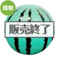 超BIGビーチボール90cm(スイカ)