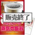 【パネもく!】バルミューダ 蒸気炊飯器(A3パネル付)[当日出荷可]