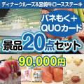 【参加賞向けQUOカード付】ディナークルーズ&宮崎牛20点セット[送料無料]