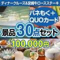 ディナークルーズ&宮崎牛30点セット(QUOカード500円20枚含む)[送料無料]