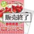 <季節限定>【パネもく!】静岡県産 紅ほっぺいちご600g(A4パネル付)[当日出荷可]