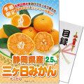 <季節限定>【パネもく!】静岡県産 三ケ日みかん2kg
