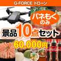 G-FORCE ドローン10点セット[送料無料・全て目録パネル付]
