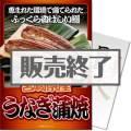 【パネもく!】宮崎県産うなぎの蒲焼(A4パネル付)[当日出荷可]