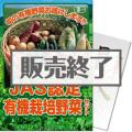 【パネもく!】JAS認定 有機栽培野菜セット(A4パネル付)[当日出荷可]