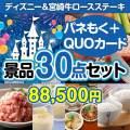 ディズニー&宮崎牛30点セット(QUOカード500円20枚含む)[送料無料]
