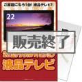 <販売終了>【パネもく!】22型地デジ対応デジタルハイビジョン液晶テレビ(A4パネル付)[当日出荷可]