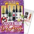 【パネもく!】ソムリエ特撰 ワインセット(A4パネル付)