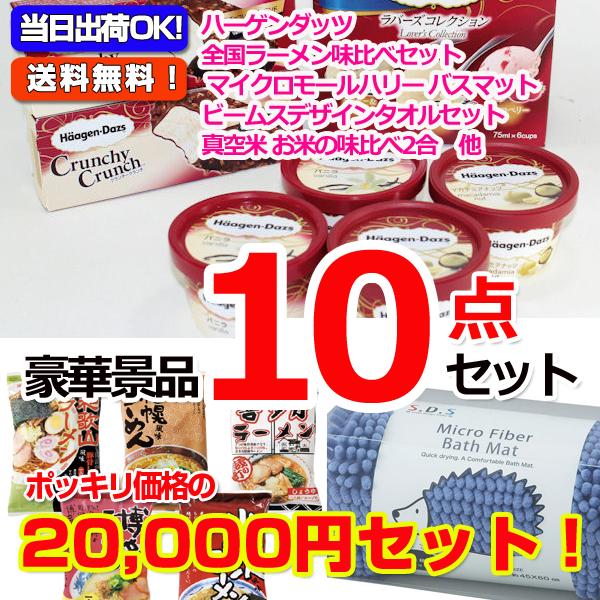 20000円ポッキリ!ハーゲンダッツ景品パネル&現品10点セットA(15415)