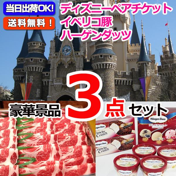 東京ディズニーリゾートペアチケット&イベリコ豚肩ロース&ハーゲンダッツスペシャルセット豪華3点セット