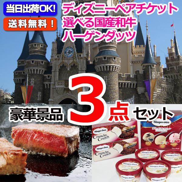 東京ディズニーリゾートペアチケット&選べる国産和牛&ハーゲンダッツ豪華3点セット