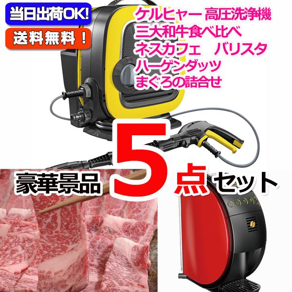 レイコップLITE&黒毛和牛「和王」&バリスタ他豪華5点セット (15056)