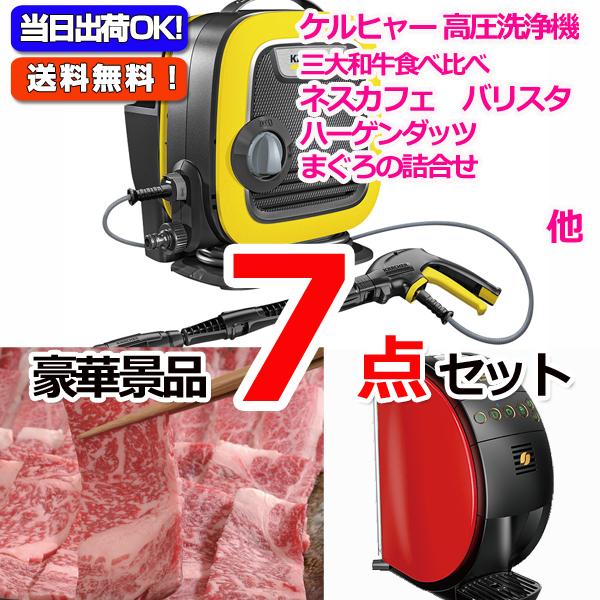 レイコップLITE&黒毛和牛「和王」&バリスタ他豪華7点セット (15059)