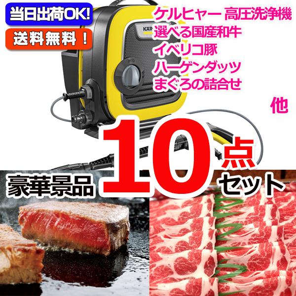 レイコップLITE&選べる国産和牛A&イベリコ豚他豪華10点セット (15061)