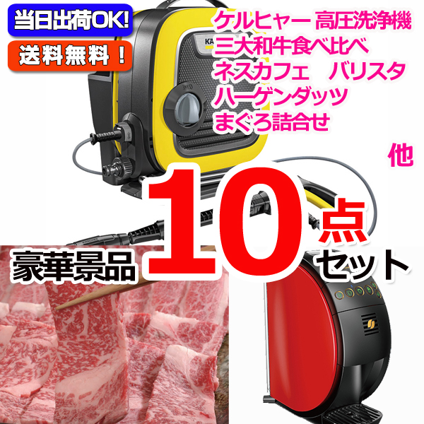 レイコップLITE&黒毛和牛「和王」&バリスタ他豪華10点セット (15062)