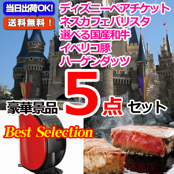ベストセレクション!人気No1!東京ディズニーリゾートペアチケット&ネスカフェバリスタ他豪華5点セット (15167)