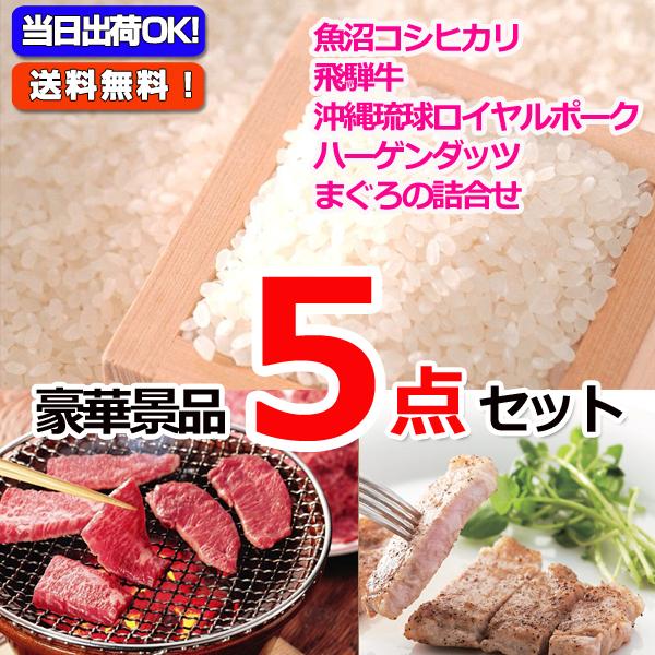 魚沼産コシヒカリ&飛騨牛焼肉&沖縄三元豚豪華5点セット  (15224)