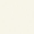 メラミン化粧板 カラーシステムフィット(パール) PJ-6013KF71 4x8