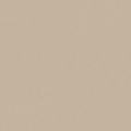 ポリエステル化粧合板 カラーフィットポリ RK-6203 4x8 表面エンボス(梨地)仕上