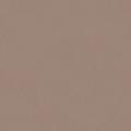 ポリエステル化粧合板 カラーフィットポリ RK-6204 4x8 表面エンボス(梨地)仕上