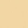 ポリエステル化粧合板 カラーフィットポリ RK-6502 4x8 表面エンボス(梨地)仕上