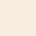 ポリエステル化粧合板 カラーフィットポリ RK-6516 4x8 表面エンボス(梨地)仕上