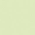 ポリエステル化粧合板 カラーフィットポリ RK-6601 4x8 表面エンボス(梨地)仕上