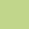 ポリエステル化粧合板 カラーフィットポリ RK-6602 4x8 表面エンボス(梨地)仕上