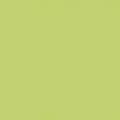 ポリエステル化粧合板 カラーフィットポリ RK-6603 4x8 表面エンボス(梨地)仕上