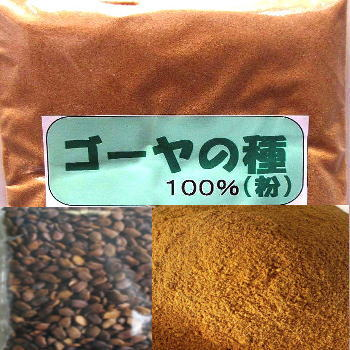 ゴーヤの種100g (ごーや にがうり)100%