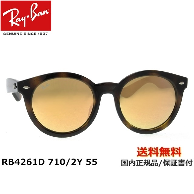 [Ray-Ban レイバン] RB4261D 710/2Y 55