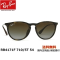 RayBan RB4171F 710/5T 54[偏光]