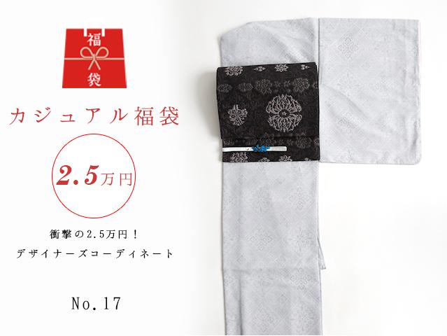 【福袋NO・17】衝撃の2.5万円!デザイナーズコーディネート5点セットー紬風龍郷柄きものset
