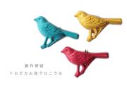 トロピカル鳥